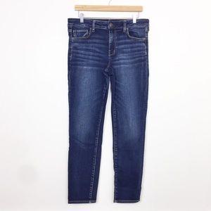 American Eagle | Plus Size Dark Wash Skinny Jeans